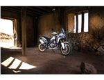 Africa Twin_021